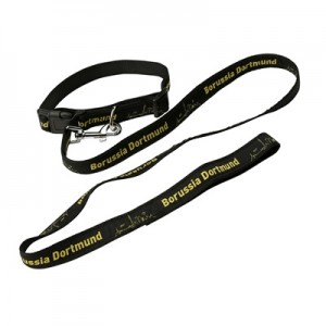 BVB Pet Collar and Lead – Small