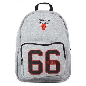 """""""Chicago Bulls Established Backpack"""""""