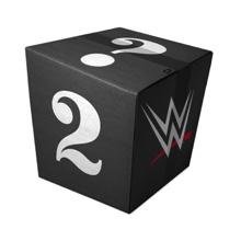 WWE Mystery Men's T-Shirt Box #2