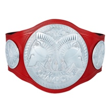 WWE Raw Tag Team Championship Commemorative Title