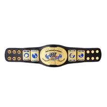 WWE Intercontinental Championship Mini Replica Title Belt