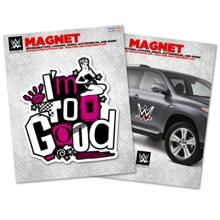 Dolph Ziggler Car Magnet