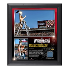 Daniel Bryan WrestleMania 31 15  x 17 Framed Ring Canvas Photo Collage