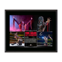 Finn Bálor NXT Championship Victory 10.5 x 13 Photo Collage Plaque