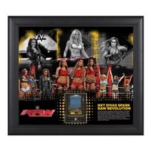 NXT Divas RAW Revolution 15 x 17 Framed Ring Canvas Photo Collage