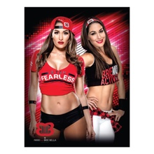 The Bella Twins 18 x 24 Poster