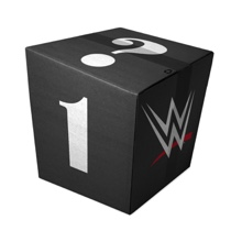 WWE Mystery Women's T-Shirt Package #1