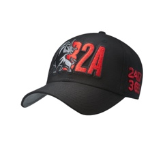 "The Rock ""B2A"" Snapback Hat"