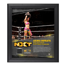 Asuka TakeOver Toronto 15 x 17 Framed Plaque w/ Ring Canvas