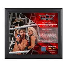 The Miz TLC 2016 15 x 17 Framed Plaque w/ Ring Canvas