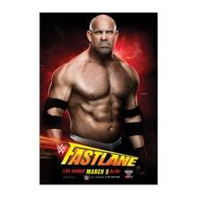 WWE FastLane 2017 Poster