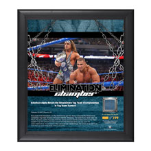American Alpha Elimination Chamber 2017 15 x 17 Framed Plaque w/ Ring Canvas