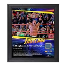 Goldberg FastLane 2017 15 x 17 Framed Plaque w/ Ring Canvas