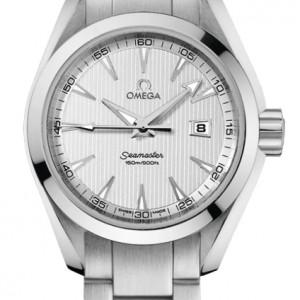 Omega Seamaster Aqua Terra 231.10.30.61.02.001