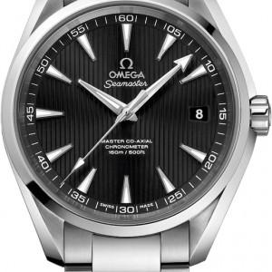 Omega Seamaster Aqua Terra 231.10.42.21.01.003