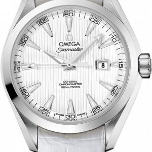 Omega Seamaster Aqua Terra 231.13.34.20.04.001