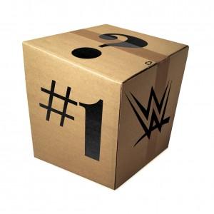 WWE Mystery Package #1