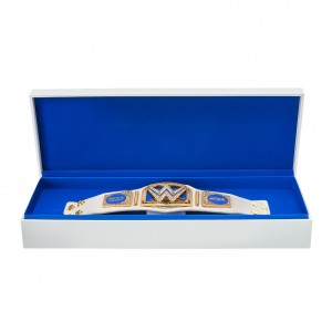 SmackDown 20th Anniversary Championship Mini Replica Title