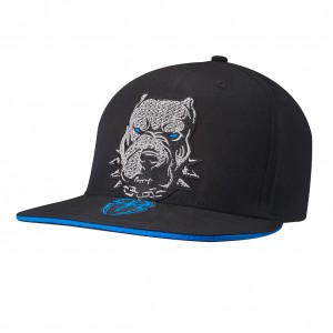 "Roman Reigns ""Big Dog Unleashed"" Snapback Hat"