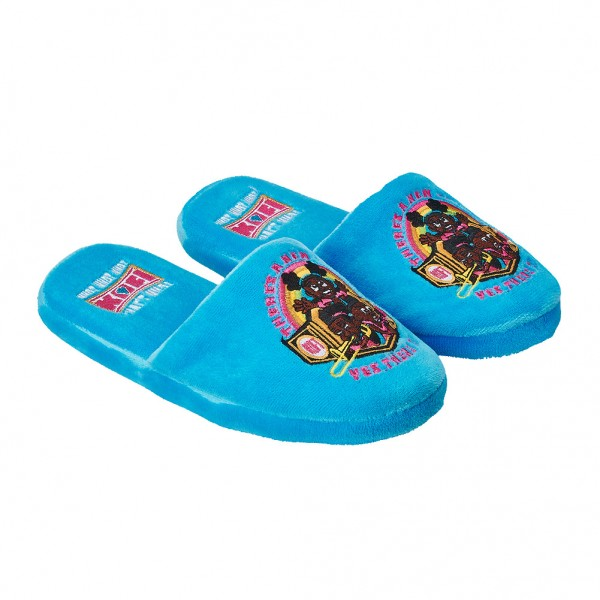 "The New Day ""There's A New Champ"" Youth Slippers"